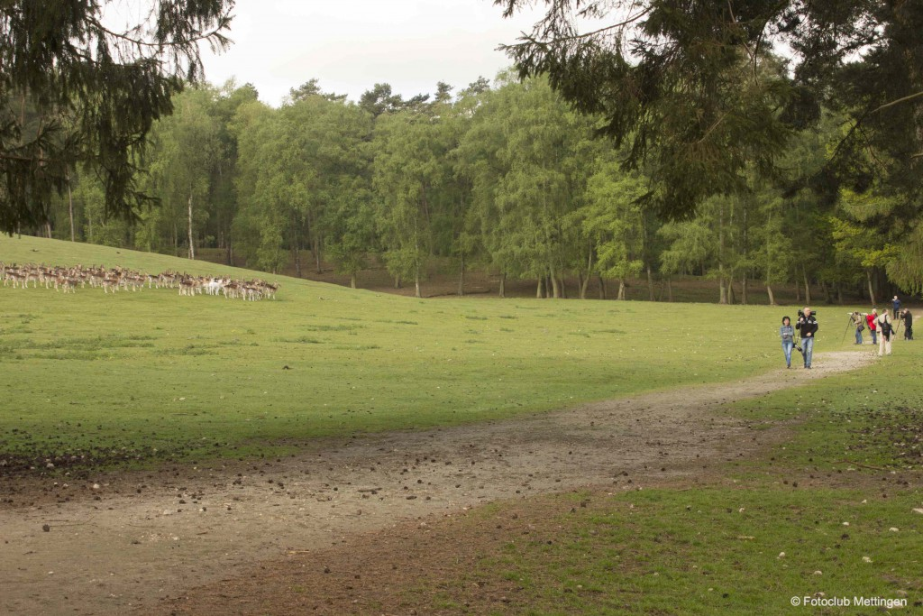 NaturwildparkGranat