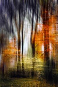 Abstraktion Herbstwald Bäume