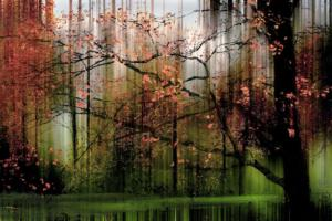 Wald Herbst Ibbenbüren abstrakt